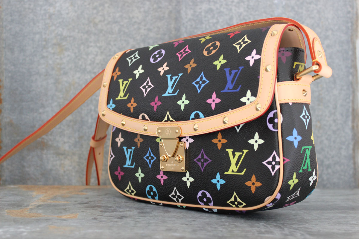 Louis Vuitton Multicolor Purse